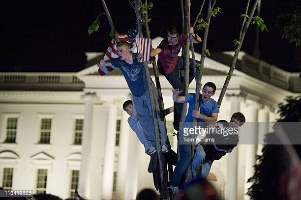 May 1: Young people gather in a tree to celebrate the death of Osama bin Laden outside of the White House after President Obama announced the...