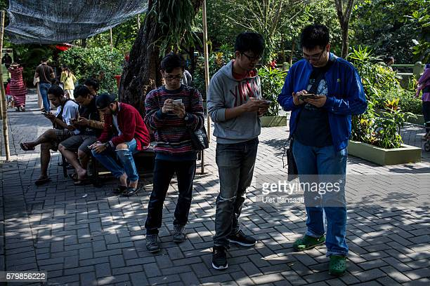 Young people play Pokemon Go game on smartphones at Gembira Loka Zoo on July 23 2016 in Yogyakarta Indonesia 'Pokemon Go' which uses Google Maps and...