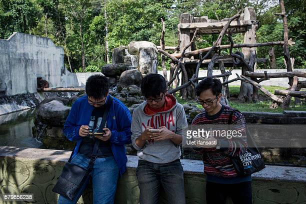 Young people play Pokemon Go game on smartphones at Gembira Loka Zoo on July 23 2016 in Yogyakarta Indonesia Pokemon Go which uses Google Maps and a...
