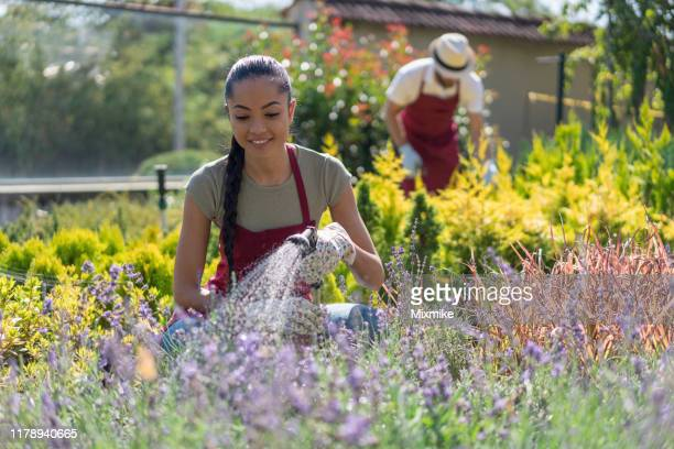 young people working in the garden - purple glove stock pictures, royalty-free photos & images