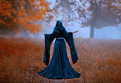 young priestess holds a secret rite of sacrifice, is alone in the autumn forest on a large glade. the escaped queen wore a blue velvet cloak-dress with wide sleeves. magnificent amazing art photo