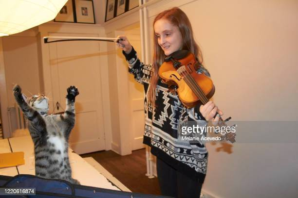 young red headed girl short hair brown eyes and freckles playing violin in the house teasing cat with the bow of violin cat is reaching up to bow trying to grab it above its head girl is smiling