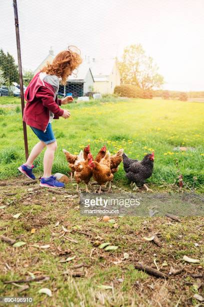 Young redhead girl with hens in the family chicken coop.
