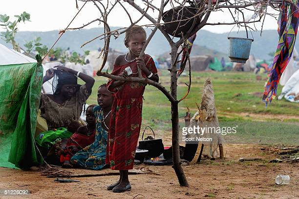 A young refugee fleeing the Dafur region of Sudan stands by a tree August 27 2004 inside the Bredjing refugee camp in Chad More than 32000 Sudanese...