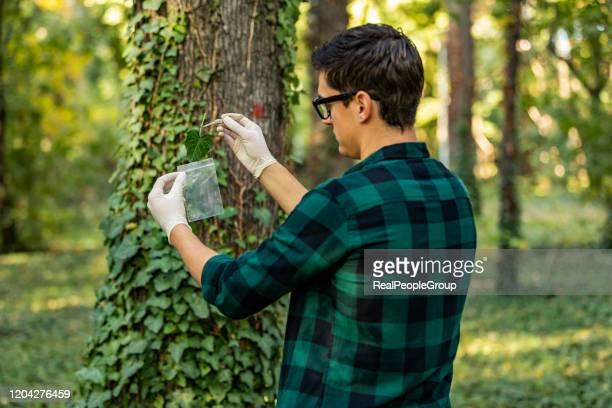 young researcher man in the forest - ecologist stock pictures, royalty-free photos & images