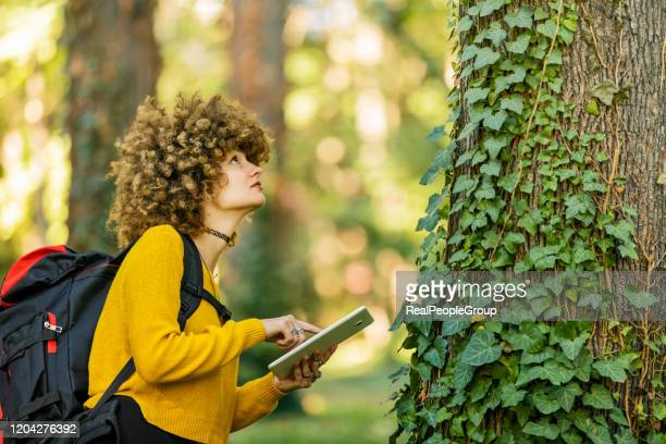 young researcher woman in the forest. female biology researcher working in nature - reality fernsehen stock pictures, royalty-free photos & images
