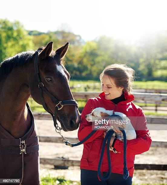 Junger Fahrer mit Hund und Pferd, Norwegen