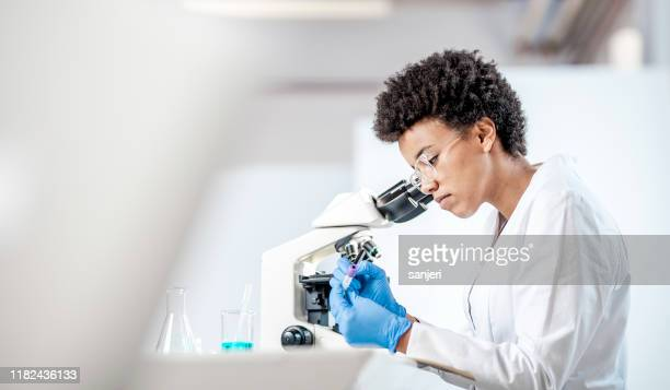 young scientist working in the laboratory - science stock pictures, royalty-free photos & images