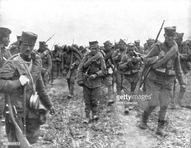 Young Serbian recruits, 1914. After the outbreak of World War I Serbia repelled a succession of Austrian invasion attempts in 1914 before succumbing...