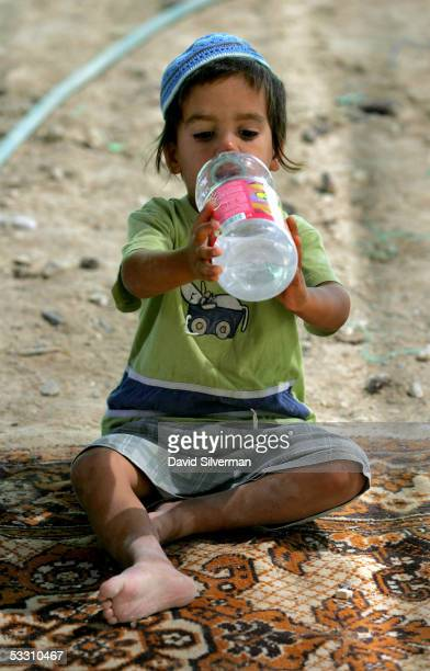 A young settler boy drinks water as he takes refuge from the searing summer sun July 31 2005 in the tent encampment at the West Bank Jewish...