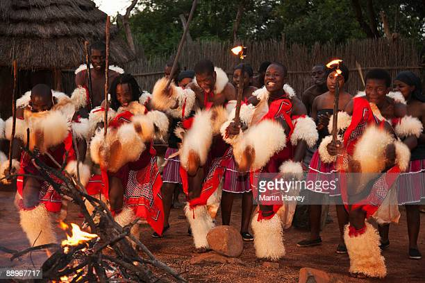 young shangaan warriors dancing around the fire. - traditional ceremony stock pictures, royalty-free photos & images