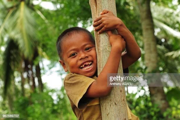 young smiling boy climbing tree Banda Aceh Sumatra Indonesia