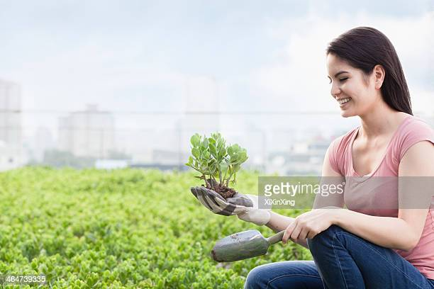 Young smiling woman gardening and holding a plant in a roof top garden in the city