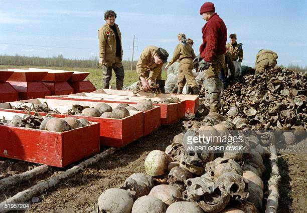 Young Soviet volunteers and militiamen pack 08 May 1991 near the city of Nizhny Novgorod coffins with recentlydiscovered skulls and remains of some...
