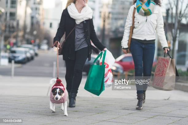 young stylish females walking down a city street with a dog and shopping bags - downtown stock pictures, royalty-free photos & images