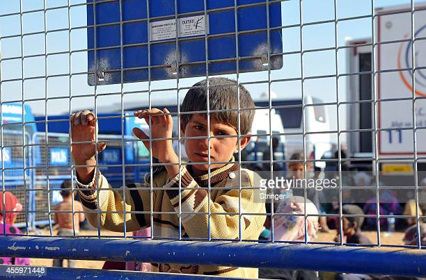 A young Syrian Kurdish refugee enters Turkey at the Yumurtalik crossing gate near Suruc on September 23 2014 in Turkey As many as 138000 Syrian Kurds...