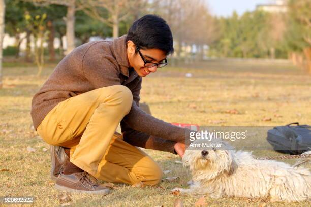 a young teenager boy playing with dog in the park - cute pakistani boys stock photos and pictures