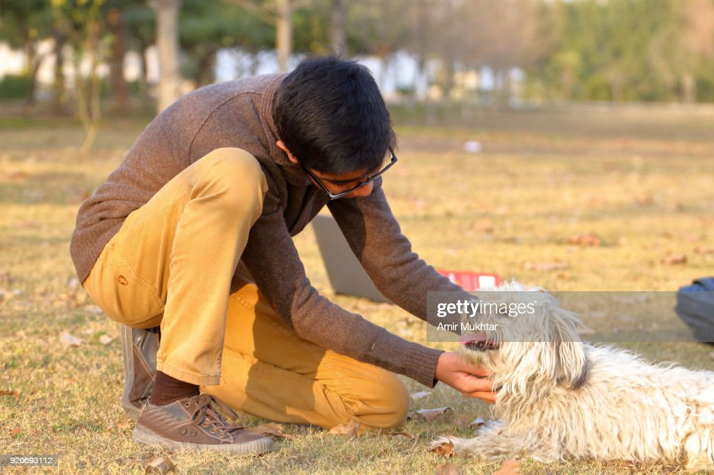 A young teenager boy playing with dog in the park : Stock Photo