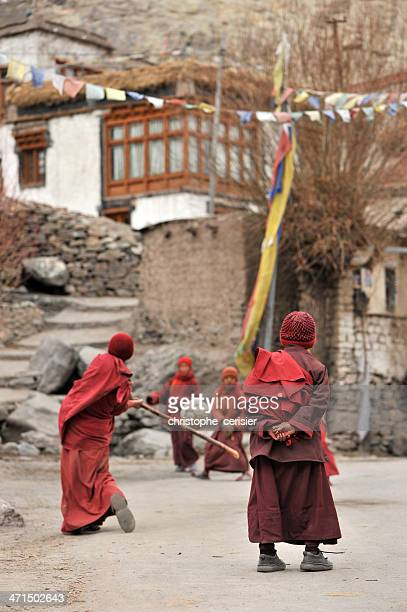 giovane tibetano buddisti di gioco di cricket - etnia indo asiatica foto e immagini stock