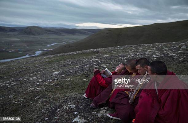 Young Tibetan monks who are prohibited from picking cordycep fungus read religious text under a full moon on the 15th day of Saka Dawa the holiest...