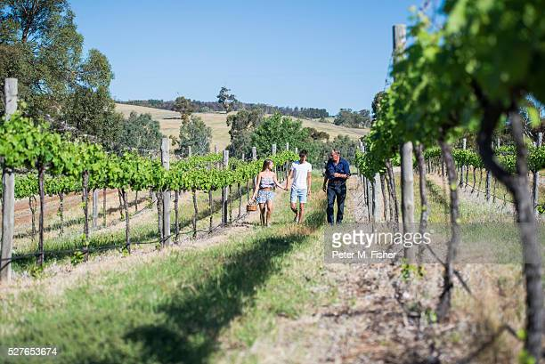 young tourists exploring vineyard in flinders rangers, australia - south australia stock photos and pictures