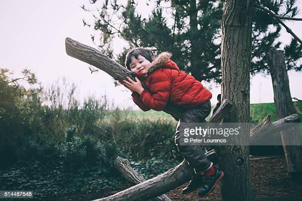 young tree hugger - peter lourenco fotografías e imágenes de stock