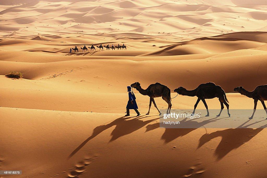 Young Tuareg con camellos en el desierto del sáhara del oeste en África : Foto de stock