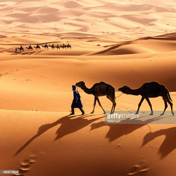 Jovem Tuaregue com Camelos no deserto do Saara Ocidental na África