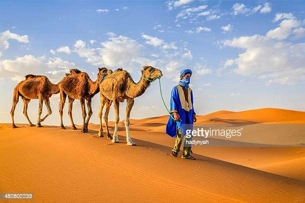 young tuareg with camels on western sahara desert in africa - merzouga stock pictures, royalty-free photos & images