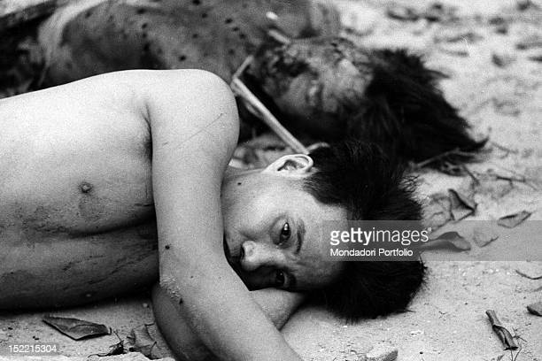 A young Viet Cong injured and captured pulled out from a crater after a mine explosion beside him a companion lies dead Vietnam 1968