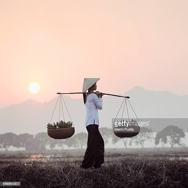 Young Vietnamese woman carrying bananas