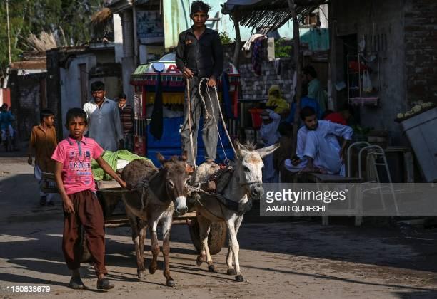 A young villager rides on his donkey cart near the shrine of Baba Guru Nanak Dev at Gurdwara Darbar Sahib in Pakistan's town of Kartarpur near the...