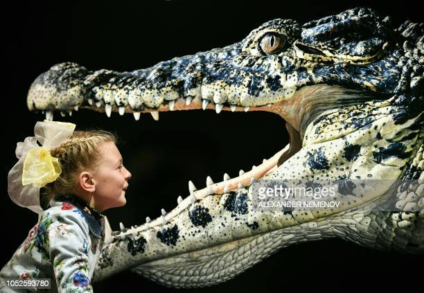 Young visitor looks at the photograph 'Cuban Crocodile' by Tim Flach, a British photographer who specialises in studio photography of animals, during...