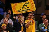 perth australia young wallabies fans show