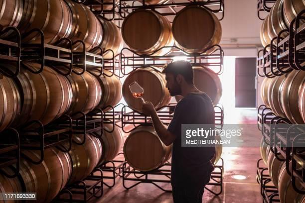 セラーでワインを味わう若いワインメーカー - 地下貯蔵室 ストックフォトと画像