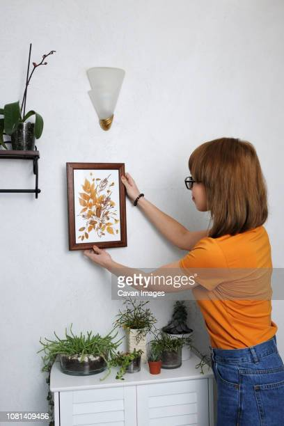 young woman adjusting picture frame on white wall at home - hanging stock pictures, royalty-free photos & images