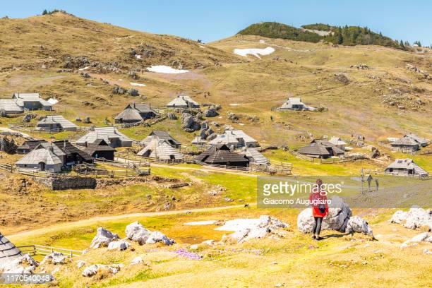 young woman admiring an old shepherd village at velika planina during crocus flowering, stahovica, upper carniola region, slovenia, europe - eden pastora fotografías e imágenes de stock