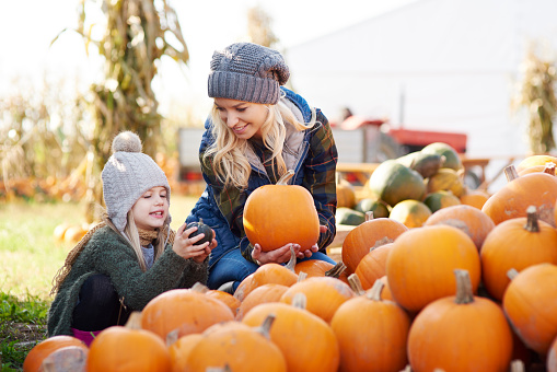 Young woman and daughter selecting pumpkin from stack at pumpkin patch - gettyimageskorea