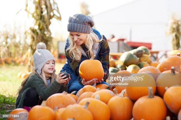 young woman and daughter selecting pumpkin from stack at pumpkin patch - pumpkin stock pictures, royalty-free photos & images