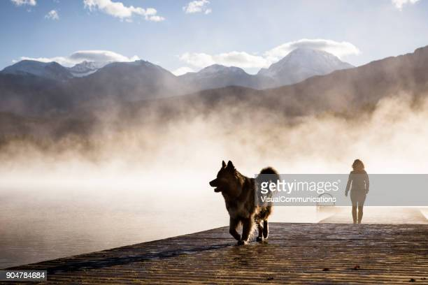 young woman and dog on a walk during sunrise by the lake. - whistler british columbia stock pictures, royalty-free photos & images