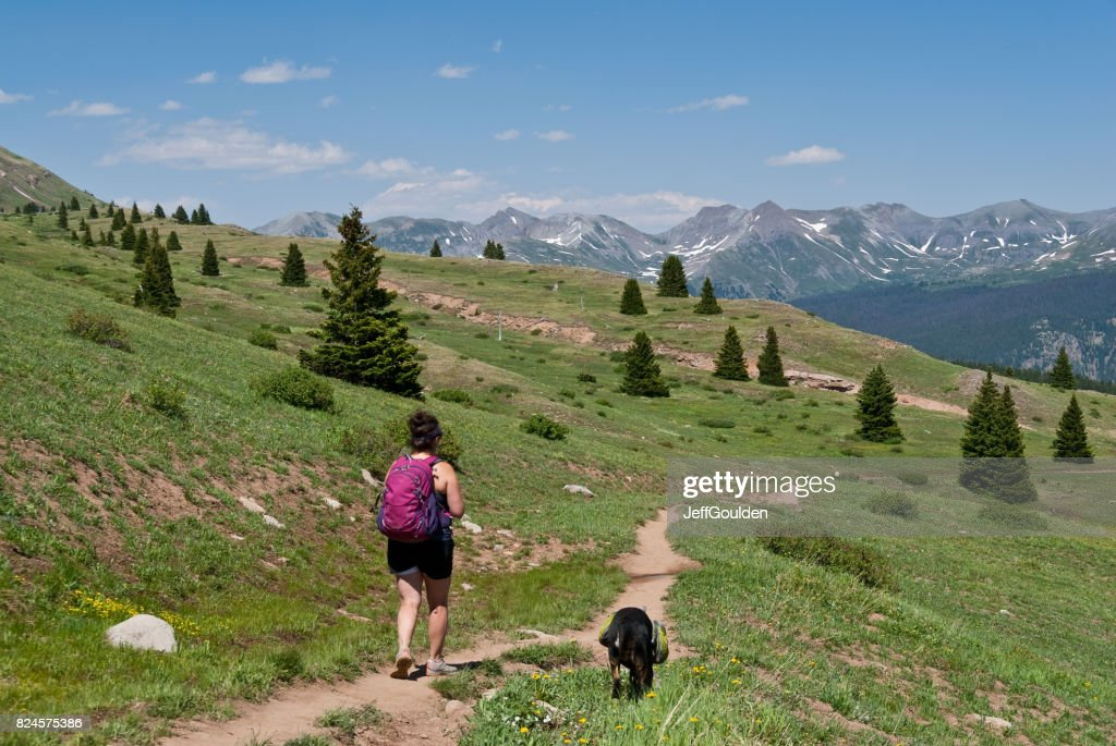 Young Woman Hiker on the Colorado Trail with Her Dog : Stock Photo