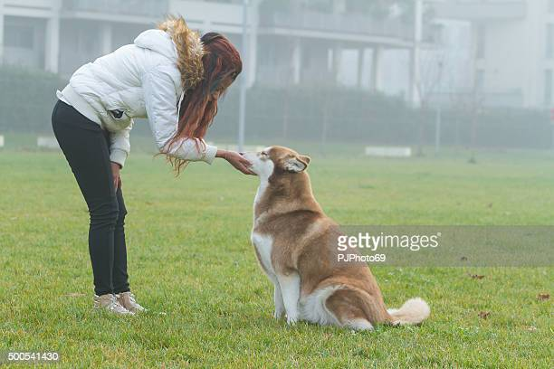 young woman and her dog in urban park - pjphoto69 stock pictures, royalty-free photos & images