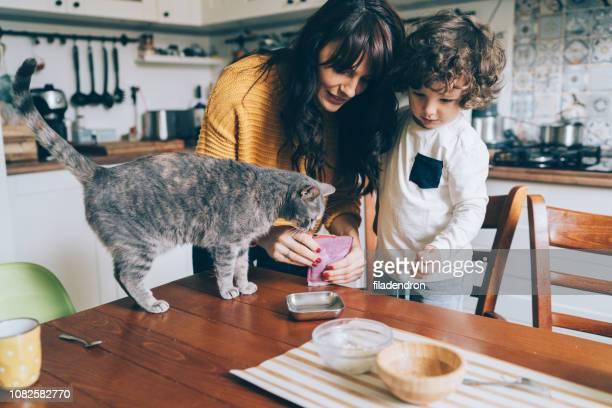 jeune femme et petit garçon alimentation chat - nourrir photos et images de collection