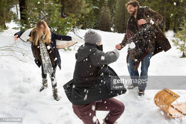 young woman and mid adult men having snowball fight in winter forest, twain harte, california, usa - nordamerika stock-fotos und bilder