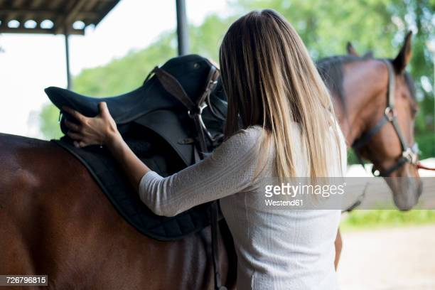 Young woman applying saddle at horse's back