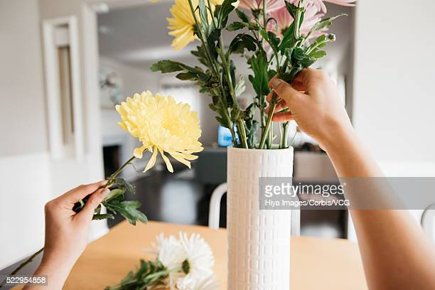 Young woman arranging cut flowers