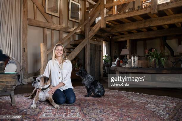 young woman at home with boxer and english cocker spaniel - west sussex stock pictures, royalty-free photos & images