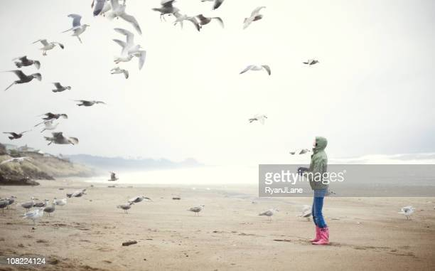young woman at the beach feeding sea gulls - oregon coast stock pictures, royalty-free photos & images