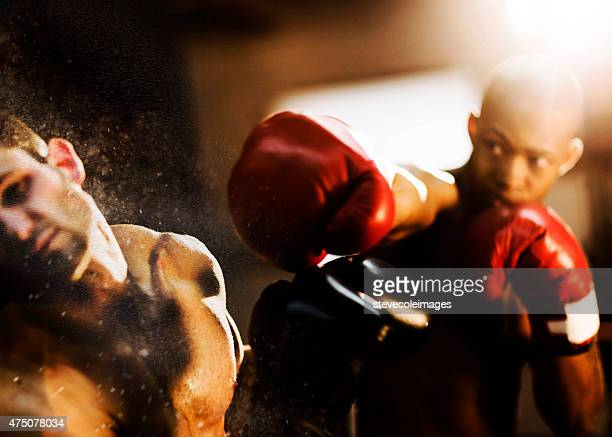 Young woman boxer.
