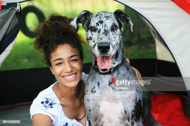 young woman camping - great dane stock pictures, royalty-free photos & images